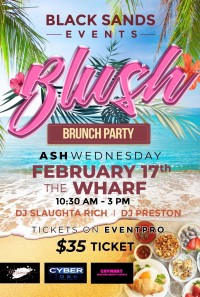 BLUSH BRUNCH PARTY