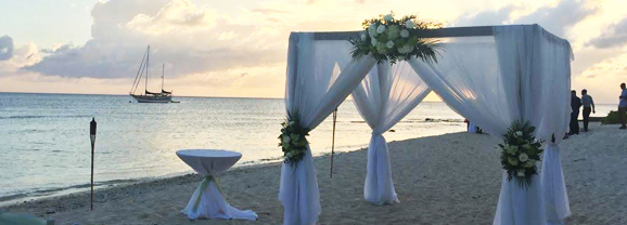 Are You Looking For A Wedding Venue in Cayman? - The Wharf Restaurant