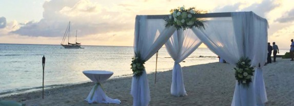 Are You Looking For A Wedding Venue in Cayman? - Image 1