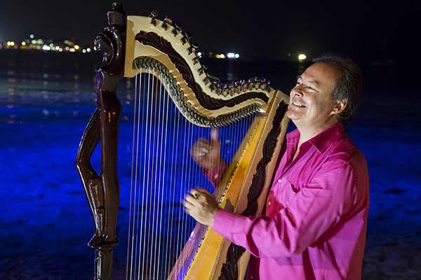 The Musician plays the harp at the Wharf Restaurant